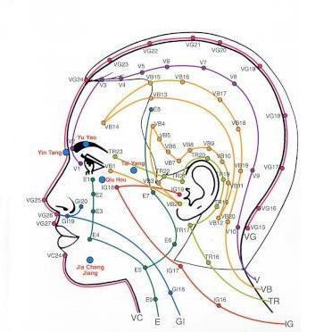 Points reflexologie faciale profil